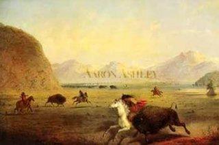 Lov Bizonů indiány